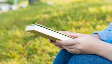 草原で読書